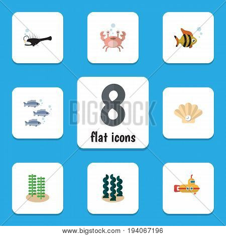 Flat Icon Nature Set Of Seafood, Cancer, Alga And Other Vector Objects. Also Includes Pearl, Underwater, Conch Elements.
