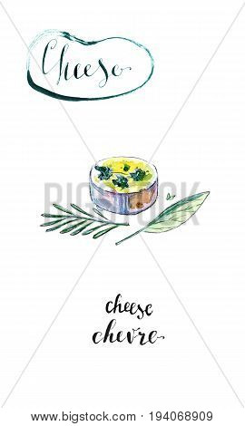 Watercolor piece of French goat cheese Chevre with leaf of basil and twig of rosemary hand drawn illustration