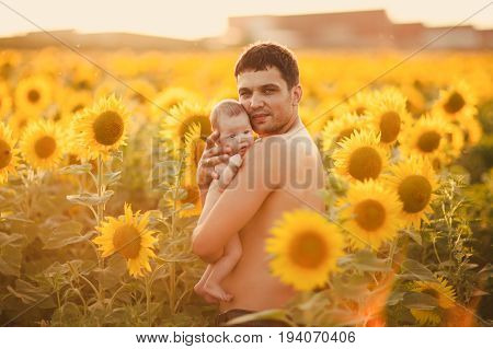 Dad with a bare torso hold his naked babygirl in his arms on the field of sunflowers.