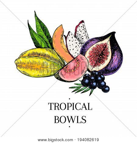 Vector hand drawn exotic fruits. Engraved smoothie bowl ingredients. colored icons. Tropical sweet food. Carambola guava papaya pitahaya fig acai. Use for exotic restaurant food party