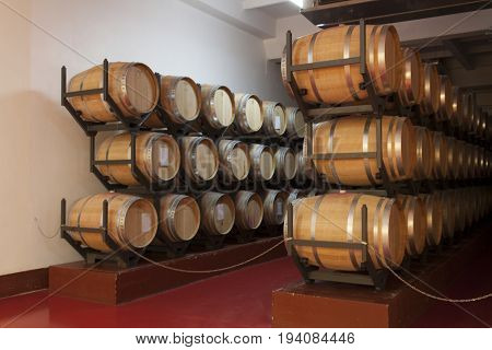 Barrels in the wine cellar photo- Shabo, Odessa region, Ukraine, June 20, 2017