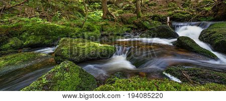 brook in forest (Jelení potok Sumava Czech republic Europe)