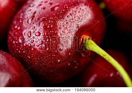 Cherries Background. Isolated Cherries. Cherry Fruits Isolated On White Background With Clipping Pat