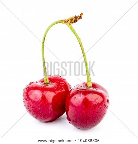 Isolated Cherries. Cherry Fruits Isolated On White Background With Clipping Path. Sweet Cherry Isola