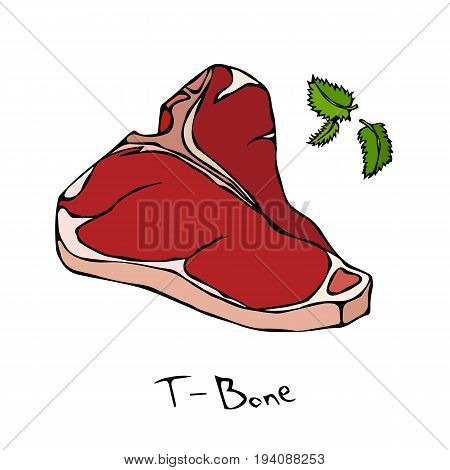 T-Bone Steak Cut Vector Isolated On White Background.