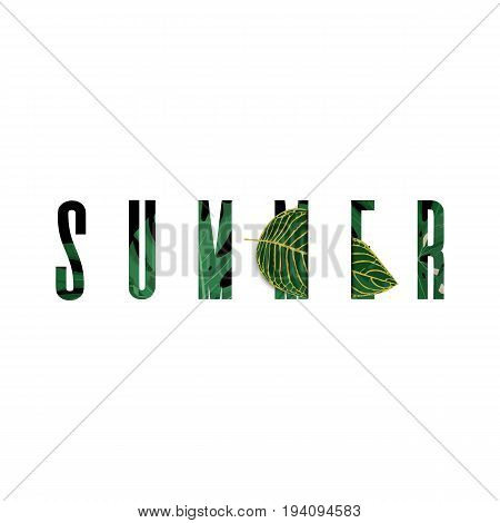 Stylized summer text with tropical floral leaves elements.