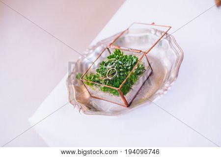 Wedding rings in square chrystal box with green gras inside