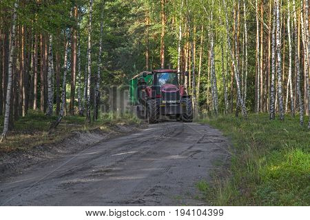 The photo shows a forest, unpaved road. It runs through a pine forest. Many birches grow from the edge of the forest. The road is a farm tractor performing forestry work.