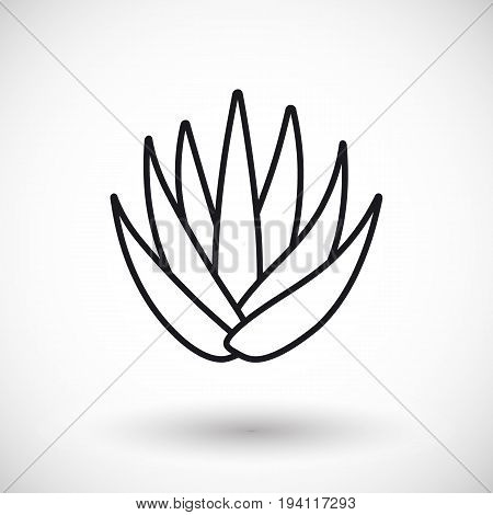 Aloe vera thin line web icon Outline design of aloe vera plant with round shadow isolated on the white background vector illustration