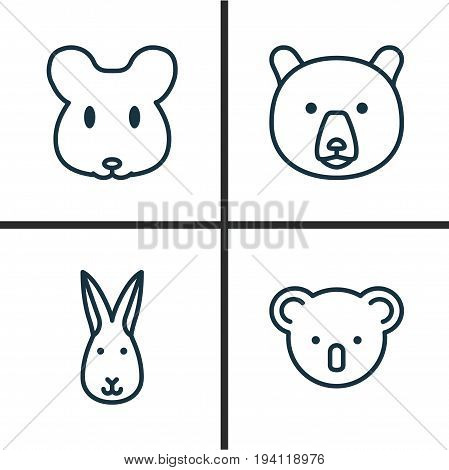 Zoology Icons Set. Collection Of Bunny, Rat, Marsupial And Other Elements. Also Includes Symbols Such As Grizzly, Rabbit, Mice.