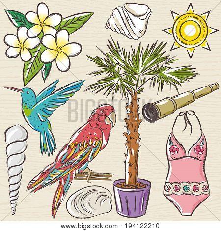 Set of summer symbols swim suit parrot Hummingbird palm tree flowers on a beige grunge background vector illustration