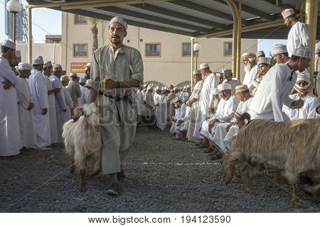 Nizwa Oman June 23rd 2017: omani man walking with his goat in order to sell it at a Habta market before Eid al Fitr