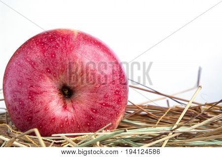 red apple on a wooden Board. white background. hay