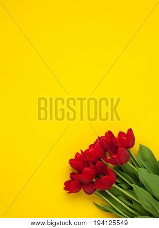 From above shot of vibrant red tulips lying on yellow surface.