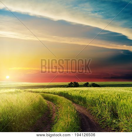 nice sunset in clouds over road in green field