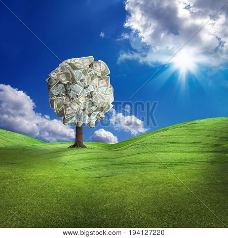 conceptual image of money tree on green landscape over sunny sky