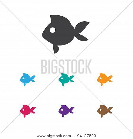 Vector Illustration Of Animal Symbol On Fish Icon. Premium Quality Isolated Turbot  Element In Trendy Flat Style.