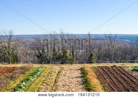 Vegetable garden on mountain with view of valley landscape in winter