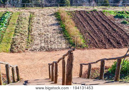 Charlottesville USA - January 20 2013: Vegetable garden on mountain in Monticello Thomas Jefferson's home
