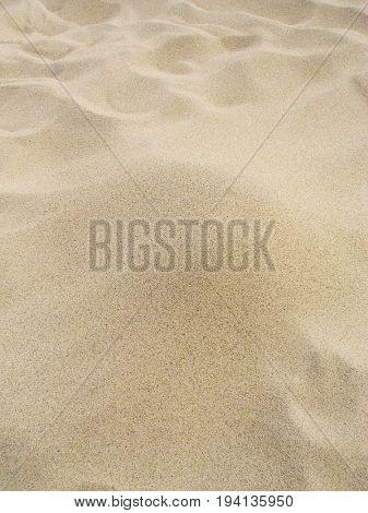 Sandy clean background