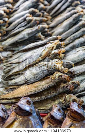 Rows Of Dried Fish