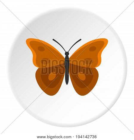 Insect butterfly with big wings icon in flat circle isolated vector illustration for web