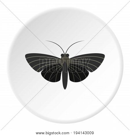 Butterfly with small wings icon in flat circle isolated vector illustration for web