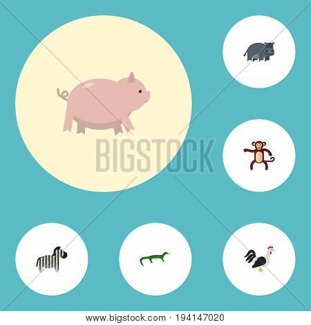 Flat Icons Reptile, Rooster, Hippopotamus And Other Vector Elements. Set Of Alive Flat Icons Symbols Also Includes Bird, Hippopotamus, Rooster Objects.