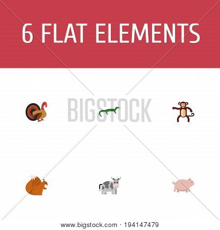 Flat Icons Chipmunk, Reptile, Swine And Other Vector Elements. Set Of Alive Flat Icons Symbols Also Includes Monkey, Swine, Hog Objects.