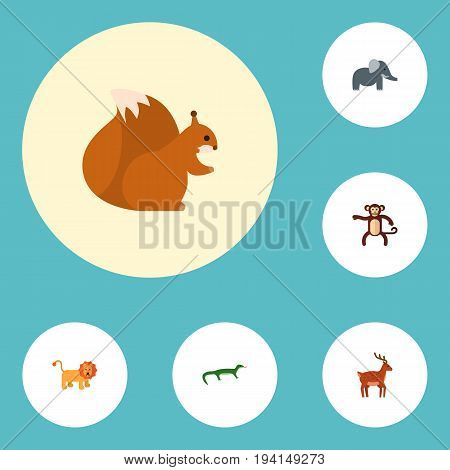 Flat Icons Trunked Animal, Moose, Chimpanzee And Other Vector Elements. Set Of Zoo Flat Icons Symbols Also Includes Squirrel, Reptilian, Forest Objects.