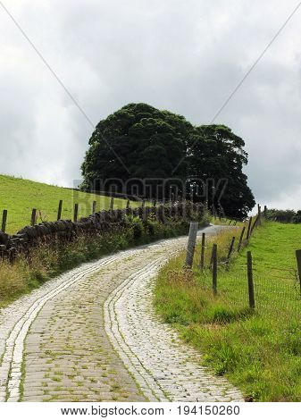 narrow winding country lane with stone walls cobbles fences and trees in summer