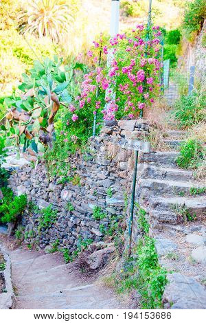 The azure trail is the most simple, the most famous and most visited trail in all the Cinque Terre