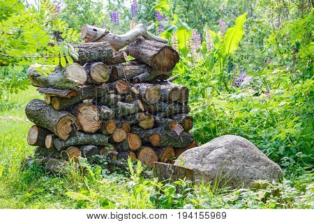 Rustic Woodpile Of Firewood On The Background Of Plants