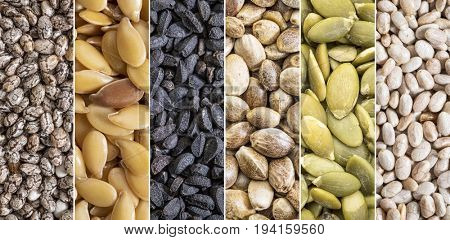 collection of healthy seeds - black and white chia, golden flax, black cumin,hemp and pumpkin - collage of macro background shots
