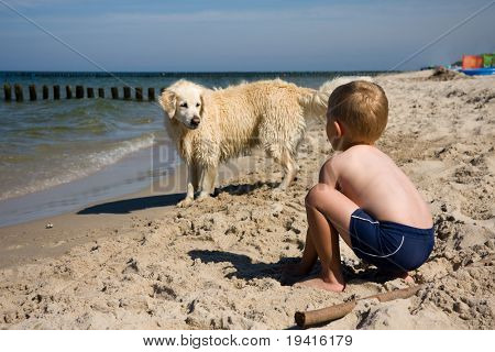 Small boy playing with a dog on a beach in summer day