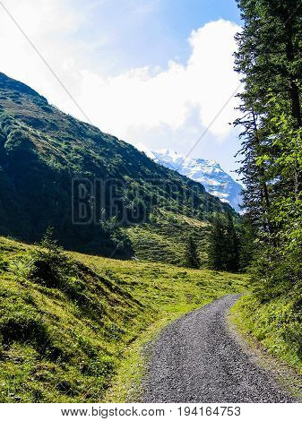 Landscape view of Swiss alps snow covered mountains and green hills with trail path
