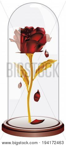 Dome images illustrations vectors dome stock photos for Rose under glass