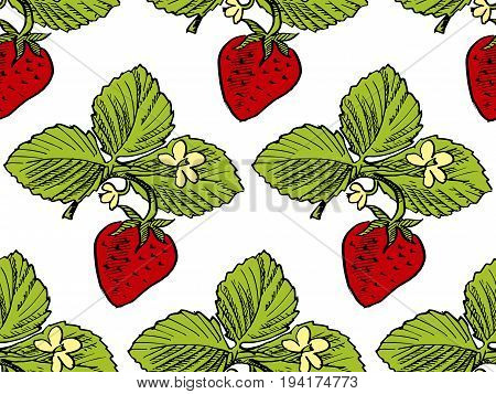 hand drawn red Strawberry pattern vector illustration