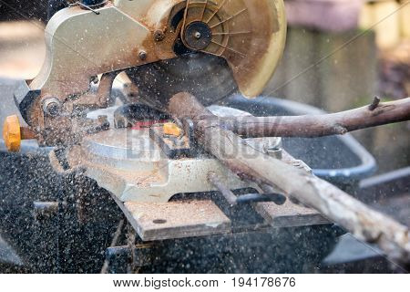 Power Drop Saw Being Used To Cut Firewood From Tree Branches