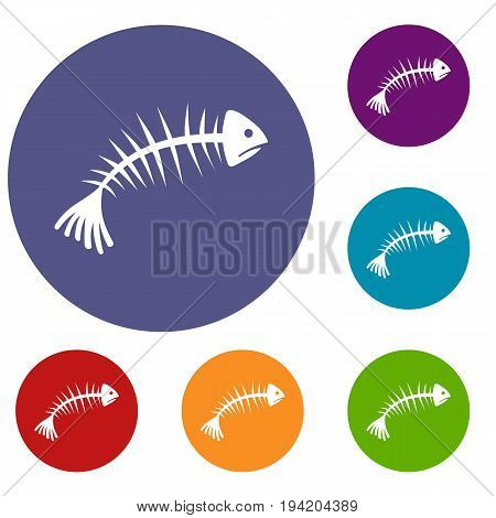 Fish bones icons set in flat circle reb, blue and green color for web