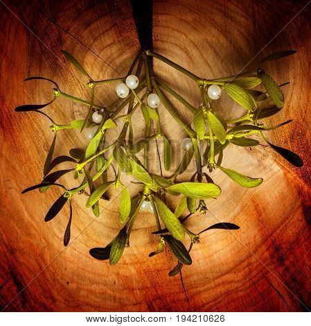 mistletoe branch on an old wooden background