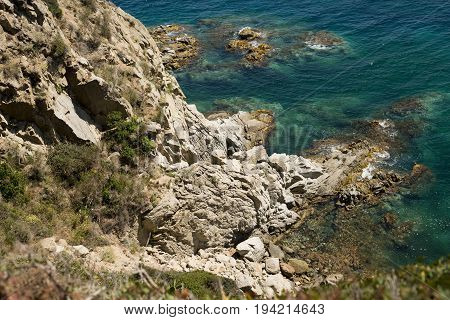 Scenic sea coast landscape with rocks and weeds