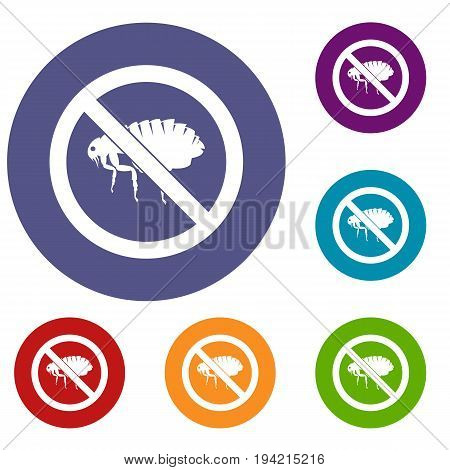 No flea sign icons set in flat circle reb, blue and green color for web