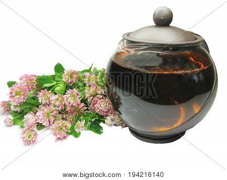 herbal tea in tea-pot with clover flowers extract