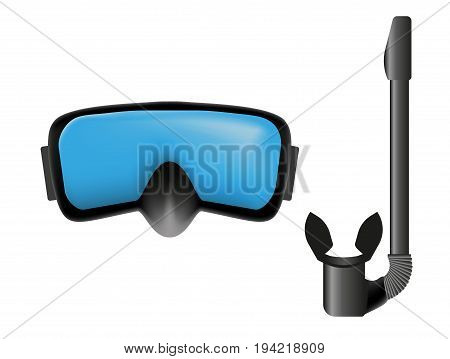 Dive mask and snorkel. Vector objects on white background