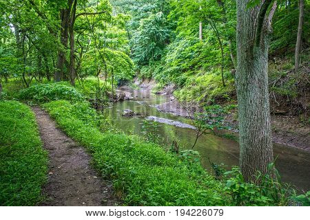 A hiking trail in Big Brook Preserve in Monmouth County New Jersey.