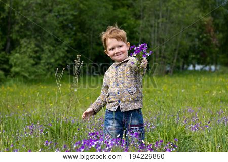 Little redhead boy in the field of Violets