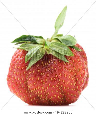 Imperfect organic heirloom home grown strawberry isolated on white