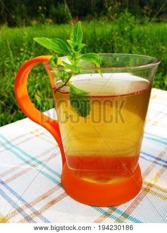 herbal tea with mint tea-drinking outdoors summer drink