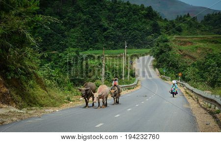 People Walking On Rural Road In Vietnam